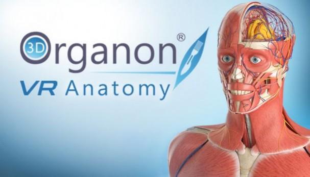 3D Organon VR Anatomy Free Download
