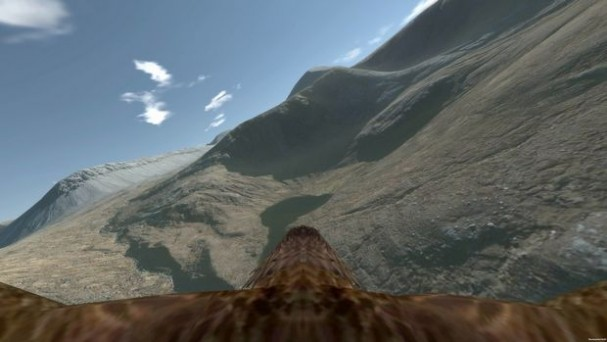 Aquila Bird Flight Simulator Torrent Download
