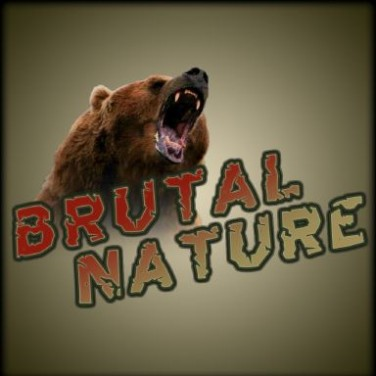 Brutal Nature Free Download