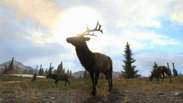 Cabela's Big Game Hunter Pro Hunts Torrent Download