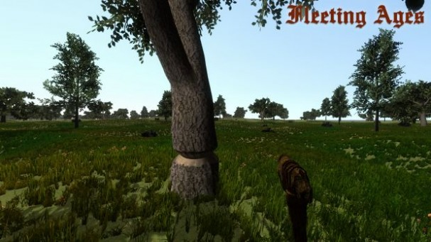 Fleeting Ages Torrent Download