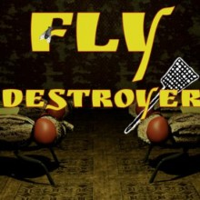 Fly Destroyer Game Free Download