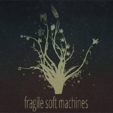 Fragile Soft Machines Game Free Download