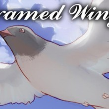 Framed Wings Game Free Download