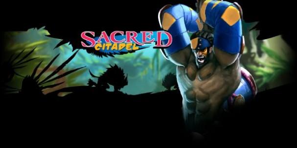 Sacred Citadel Free Download