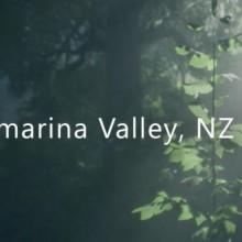 Wakamarina Valley, New Zealand Game Free Download