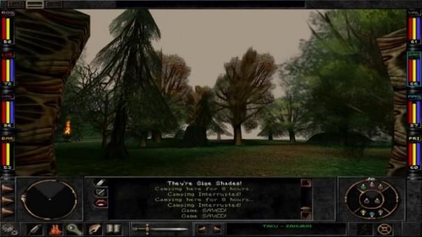 Wizardry 8 Torrent Download