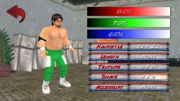 Wrestling Revolution 3D Crack